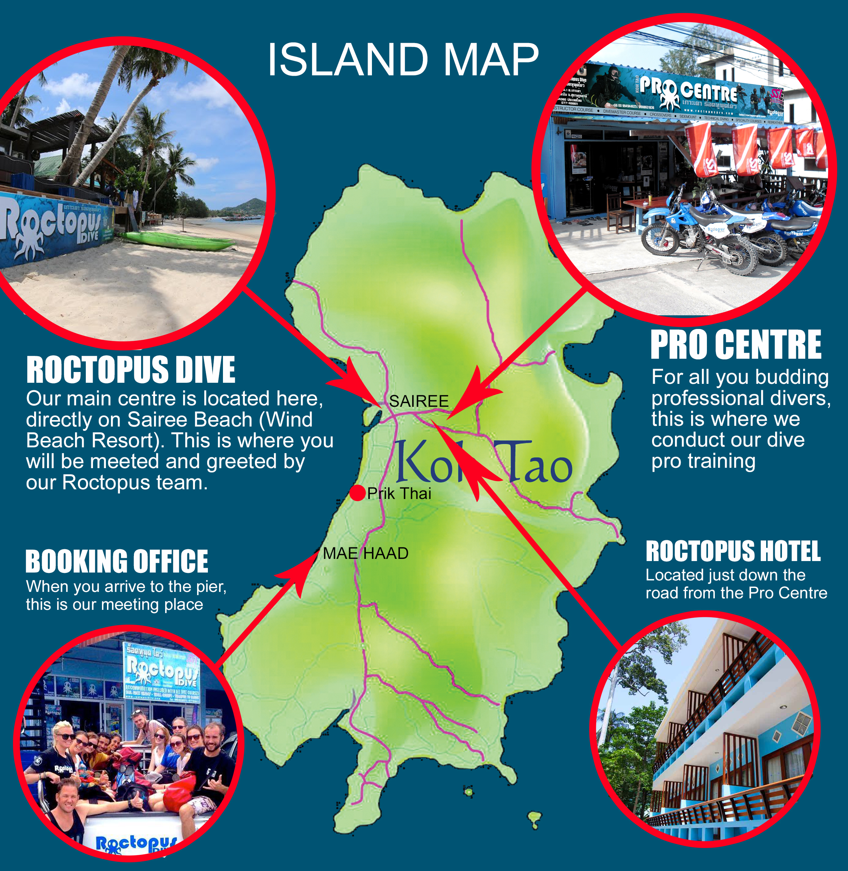 Where roctopus is located best dive shop koh tao roctopus dive - Ko tao dive resort ...