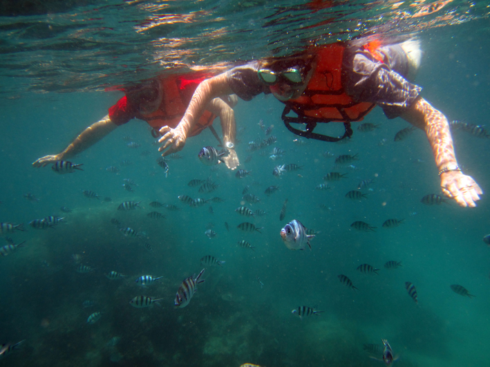 First time snorkelers enjoying the marine life
