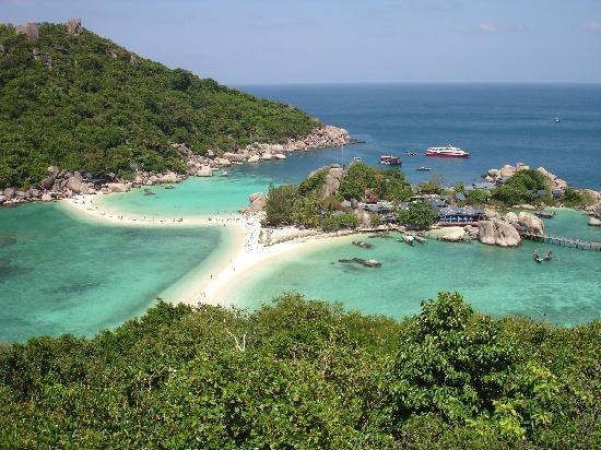 Best beaches on koh tao roctopus dive koh tao - Ko tao dive resort ...