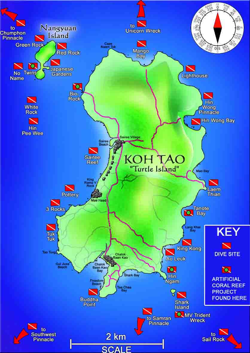 Dive Sites in Koh Tao Scuba Diving Koh Tao Roctopus