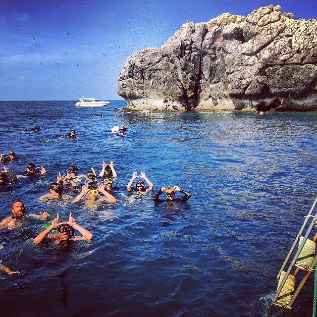 Whaleshark dive at Sail Rock