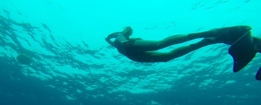 Roctopus Freediver