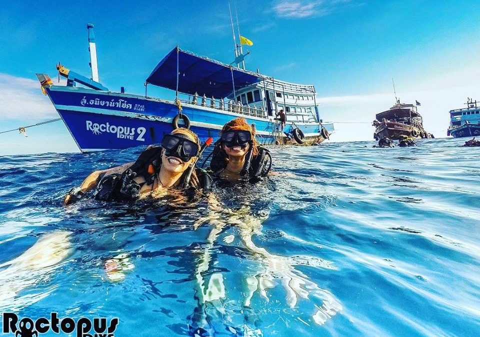 A DiveMaster's Diary – A Beautiful Koh Tao