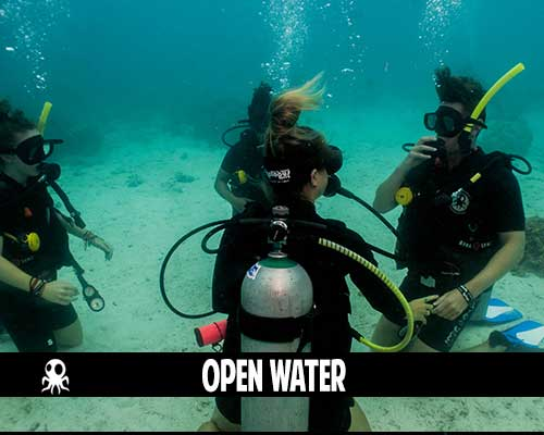 open water scuba training