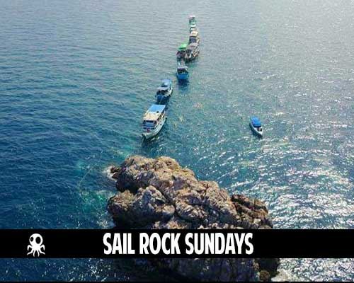 sail rock sundays roctopus