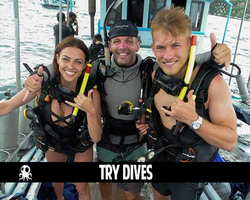 try dives koh tao